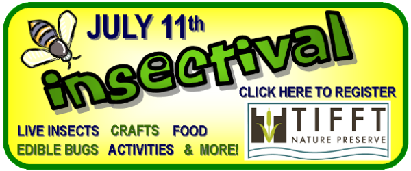 tifft insectival