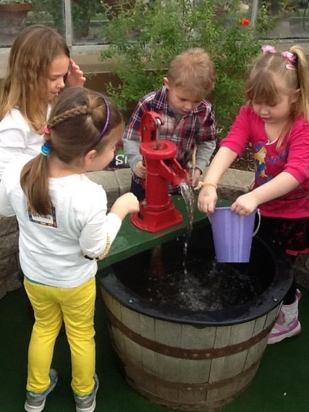 Wegmans Family Days: Rainforest Exploration